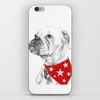 boxer iPhone & iPod Skins featuring Boxer by Natasha Maiklem