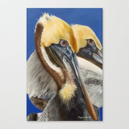 A Portrait Of Two Pelicans Canvas Print