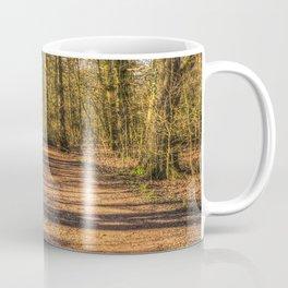 Spring Forest Path Coffee Mug