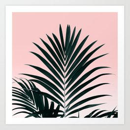Tropical Green palm tree leaf blush pink gradient photography Art Print