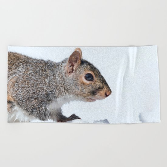 Snow Squirrel Beach Towel