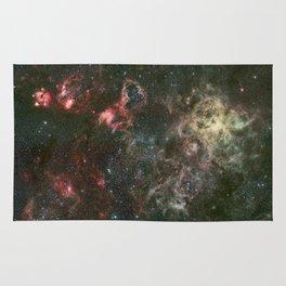 Tarantula Nebula and its surroundings Rug