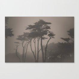 Sutro Shadows Canvas Print