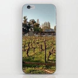 Chilean Vine iPhone Skin