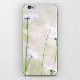 Margeritenwiese iPhone Skin