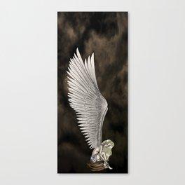 Angel's Wings Canvas Print
