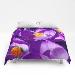 Purple sea Comforters