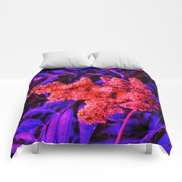 Red and Blue Sideways Sumac Comforters