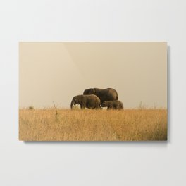 Small Medium Large Metal Print