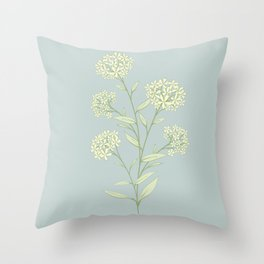 Terracina daisy Throw Pillow