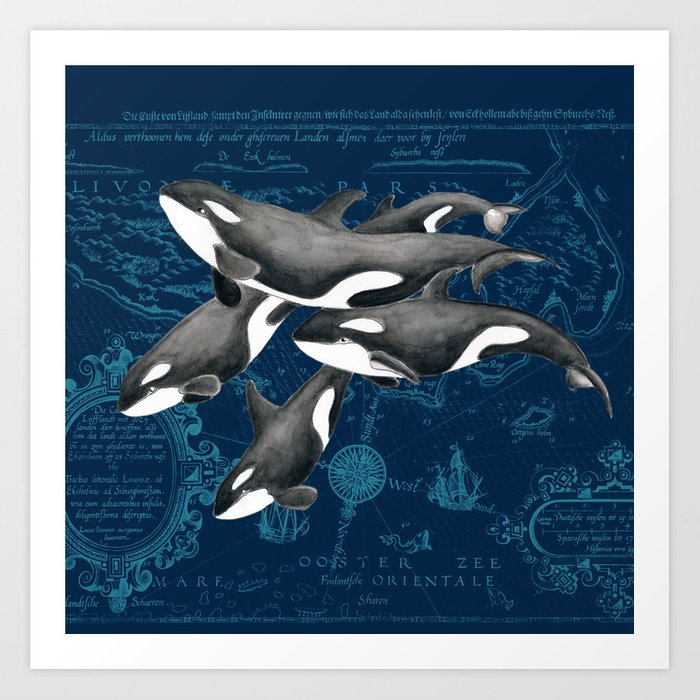 Orca Whales Family Indigo Vintage Map Art Print on flag out, ops out, letter out, print out, school's out, drawing out,