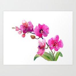 Pink Orchids, pink room floral orchid design Art Print