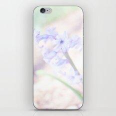 Hyacinth rush iPhone & iPod Skin