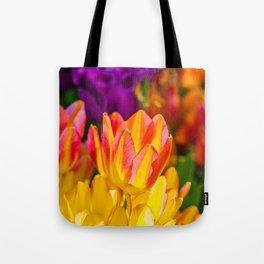Tulips Enchanting 09 Tote Bag