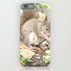 The Hungry Squirrel Slim Case iPhone 6s