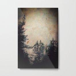 Winter Wanderings Metal Print
