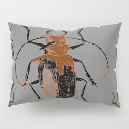 NATURE LOVERS BEETLE BUG COLLECTION ART Pillow Sham