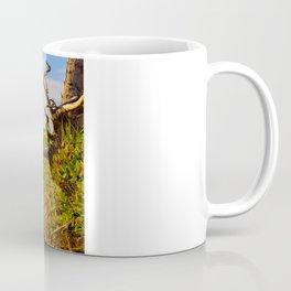 HDR Sandy Cliffs Coffee Mug