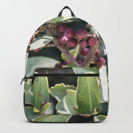 small purple berries Backpack