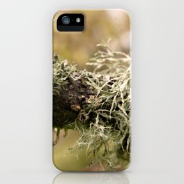 Close up of a branch with moss iPhone Case
