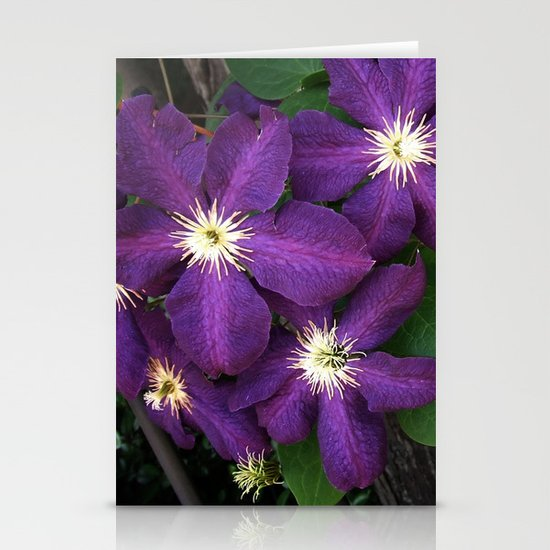 Purple Clematis Stationery Cards