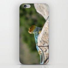 Collared Lizard iPhone & iPod Skin