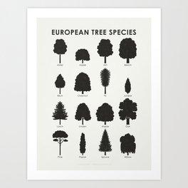 European Tree Species Art Print