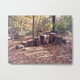 Stumps in a Row Metal Print