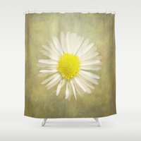 daisy Shower Curtains featuring Daisy by Pauline Fowler ( Polly470 )