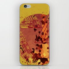 Polygons of a Photograph iPhone & iPod Skin
