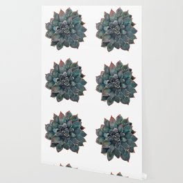 WaterColor Succulent Wallpaper