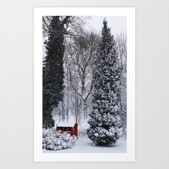 Winter in my garden Art Print