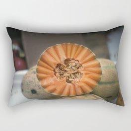 A Melon! Rectangular Pillow