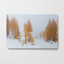 Vibrant Larch Trees Metal Print