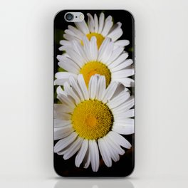Daisy Cascade iPhone Skin