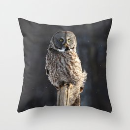 Steadfast in the wind Throw Pillow