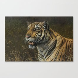 Tiger Portrait by Alan M Hunt Canvas Print