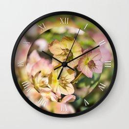 Helleborre pink flowering macro Wall Clock