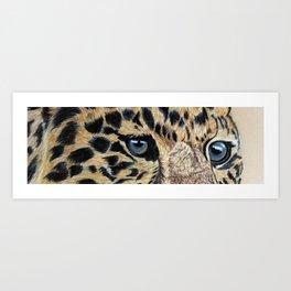 Leopard's eyes Art Print