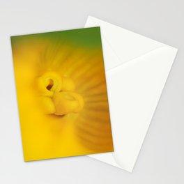 Zucchini Flower Stationery Cards
