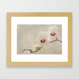 a thing of beauty Framed Art Print