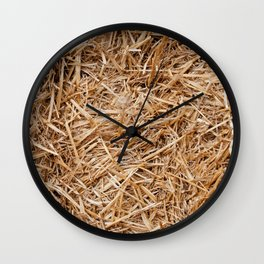 Hay day Wall Clock