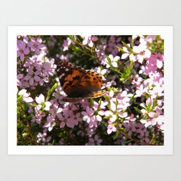 Butterfly friend Art Print