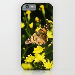 Beautiful Butterfly lowers field. Crimea, in May 2019 iPhone Case