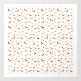 Wild Ducks Art Print