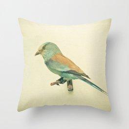 Bird Study #2 Throw Pillow