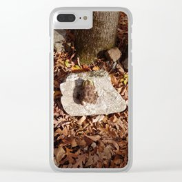 End of a Season Clear iPhone Case