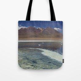 I - Desert lake Laguna Cañapa, Altiplano, Bolivia on a sunny day Tote Bag
