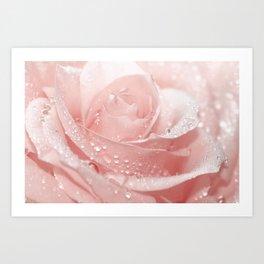 Rose 96 Art Print