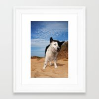 border collie Framed Art Prints featuring Border Collie by Cowden